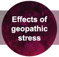 What Are The Effects Of Geopathic Stress